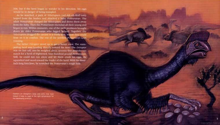 Dinosaur Parents, Dinosaur Young
