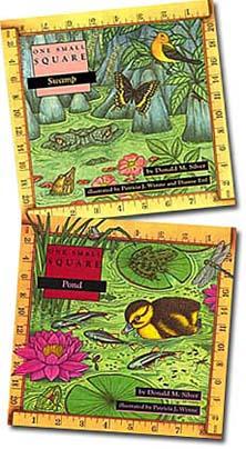 One Small Square--Wetland books
