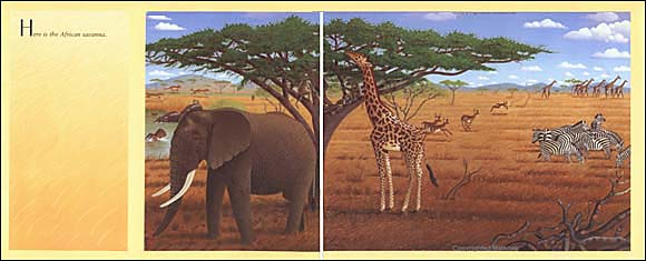 african savannah kids book