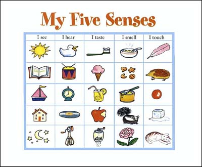 My Five Senses on Science Of Smell Worksheet